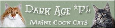 Dark Age*Pl